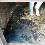 Horse-Comfort-Mattress-400