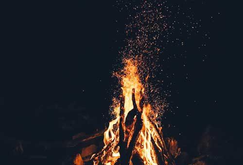 Bonfire night with horses