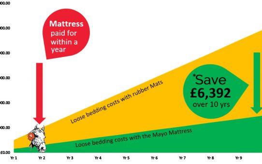 savings made with a mayo mattress