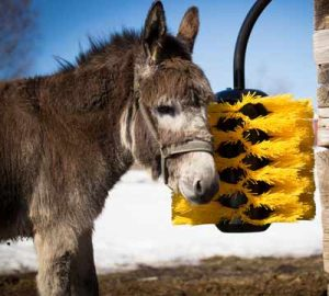 Easyswing midi brush donkey