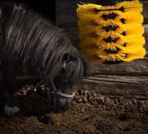 Easyswing midi brush pony